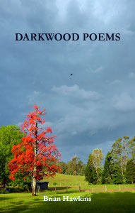 cover of Darkwood Poems